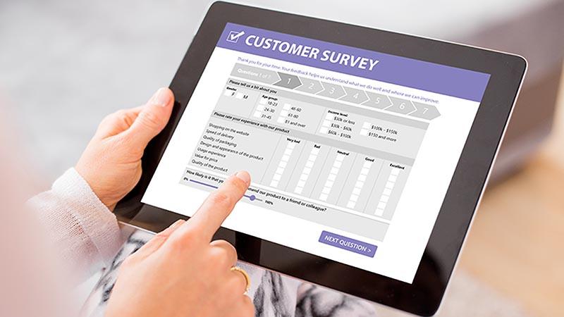 conduct marketing surveys